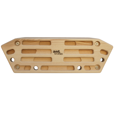 strong ant 3 fingerboard front